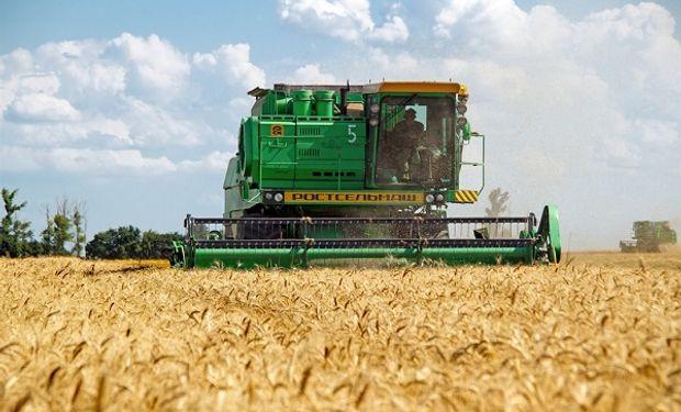 Estados Unidos cubrió una de las superficies de trigo más bajas en 100 años.