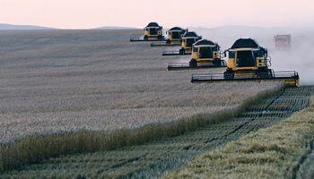 ¿Agenda de rivalidad? Brasil compró 60.000 toneladas de trigo ruso y habría dos cargamentos similares ya pactados