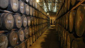 Bebidas alcohólicas: cambian características de la caña paraguaya