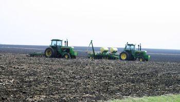 El mercado se anticipa a una mayor área de maíz en Estados Unidos