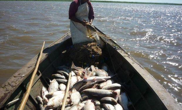 El Gobierno cerró la exportación de siete especies de pescados