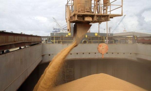 180 millones de dólares menos en trigo por excesos hídricos.