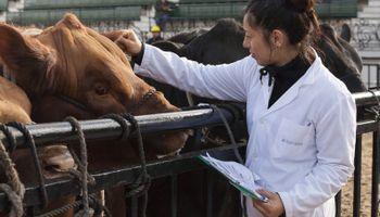Vence el plazo para reacreditarse en programas de sanidad animal