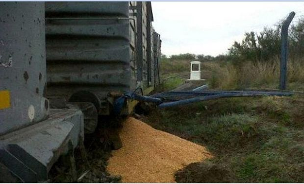 El tren estaba parado por desperfectos mecánicos. Foto: DIARIOPANORAMA.COM