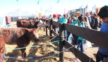 La ganadería cumple 10 años en AgroActiva y promete celebrarlo a lo grande