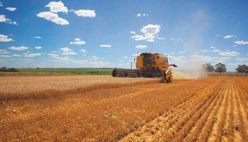 Maquinaria: evolución de una industria relevante para el agro argentino