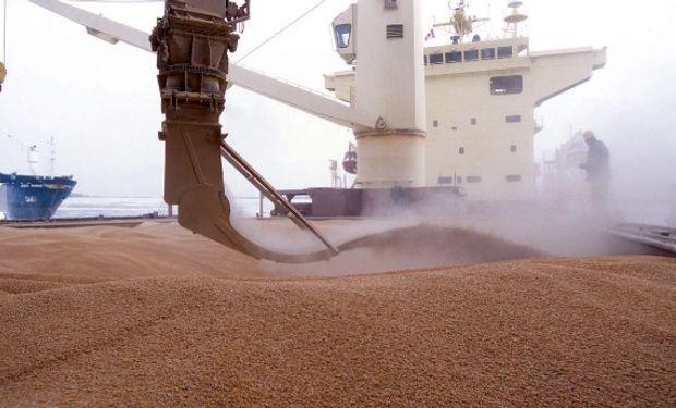 Alentado por las buenas perspectivas de exportación, el precio del trigo nuevo superó los US$ 200 la tonelada.
