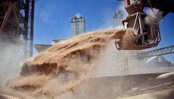 Divisas del agro: la liquidación aumentó un 21% contra el año pasado