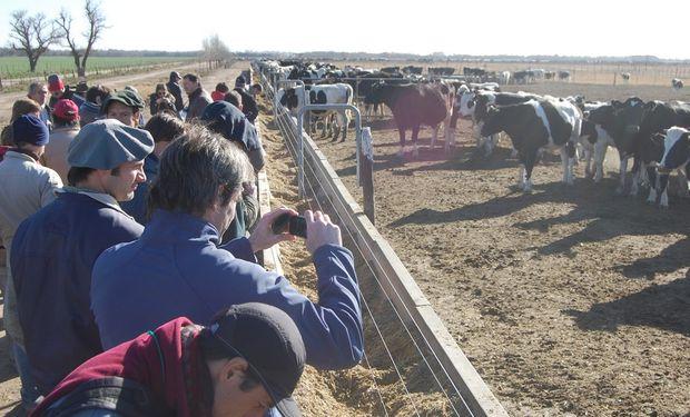 Un tour lechero con eje en el bienestar animal