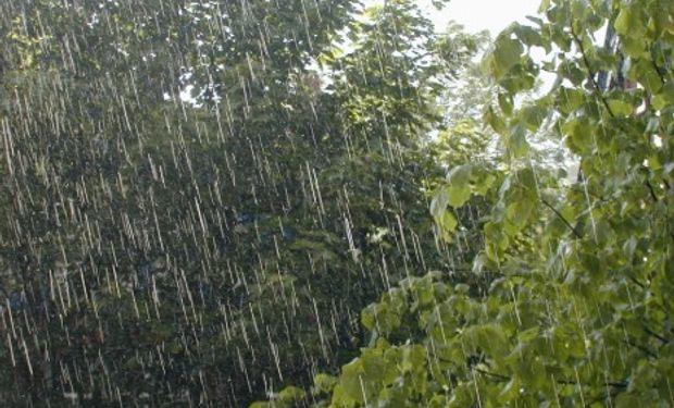 Las lluvias durante mayo dejaron valores notables.