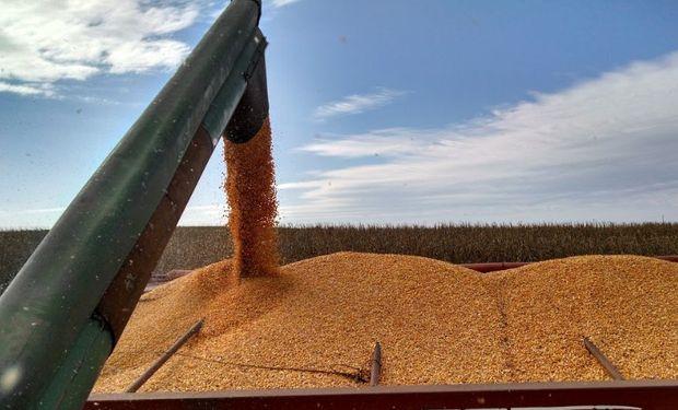 La importancia del canje agropecuario.
