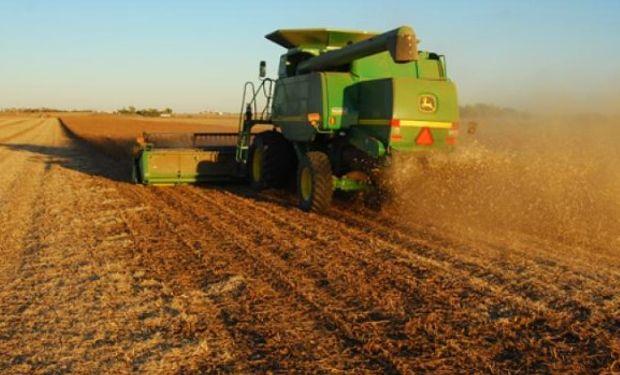 Nueva caída de los futuros de soja en Chicago.