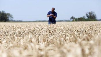Censo agropecuario: ya están las preguntas que va a realizar el Indec