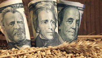 """""""Pass through"""": factor clave para evaluar el impacto de la escalada del dólar en el agro"""