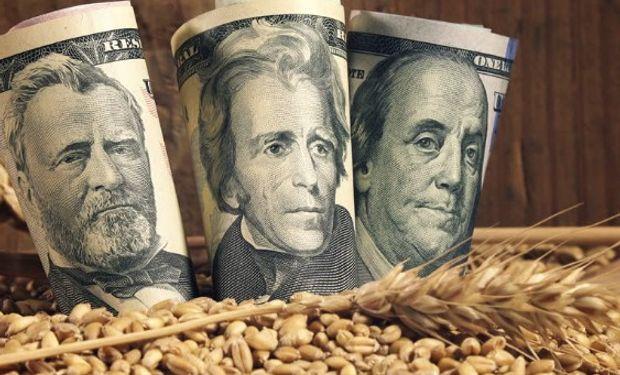 Un repaso sobre el impacto de la depreciación de peso en la actividad agrícola, ganadera y lechera local.