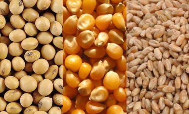Desde fyo analizaron el impacto de las recientes medidas sobre los principales cultivos de nuestro país.
