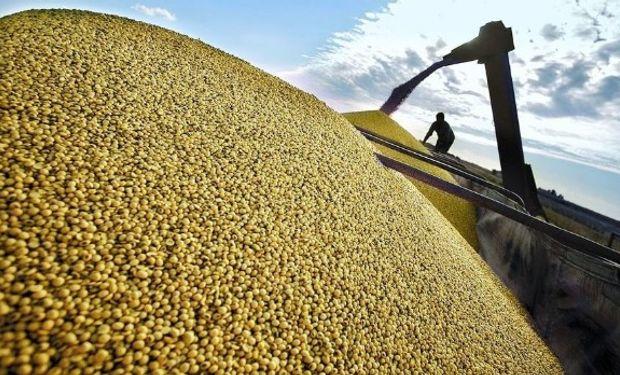 Un nuevo contrato podría convertirse en una alternativa a la Bolsa de Chicago, que domina el mercado global para los precios de la soja.
