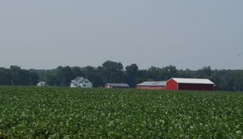 Mejora en la condición de los cultivos en Estados Unidos