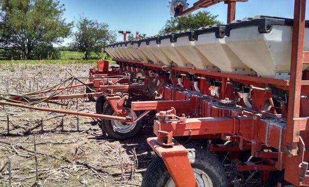 La siembra del cereal ocuparía 5,8 millones de hectáreas.