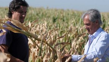 A días del Censo Agropecuario: cómo identificar a los encuestadores