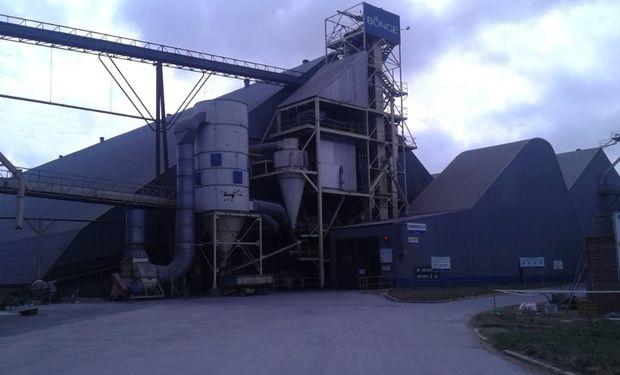 Se verificó que la firma produjo alimentos balanceados sin matrícula en el Registro Único de Operadores de la Cadena Agroindustrial (RUCA).