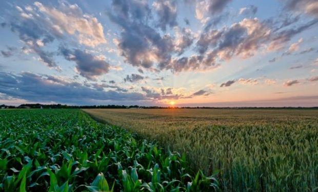 Seguros agrícolas 13-14, situación incierta
