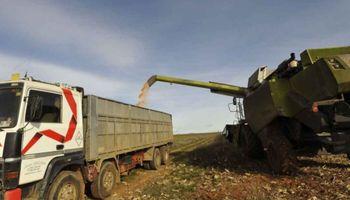 El aumento del gasoil suma una nueva preocupación en el campo