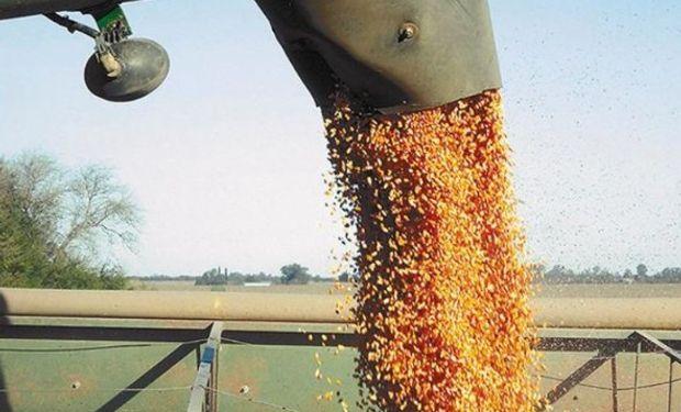 Acopiadores de granos rechazan el intento de aumentar los derechos de exportación.