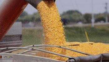 SISA: al menos 8.000 productores y operadores deben regularizar su situación fiscal