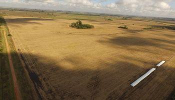 Drones y su uso para inmobiliarias rurales: cómo relevar campos en minutos