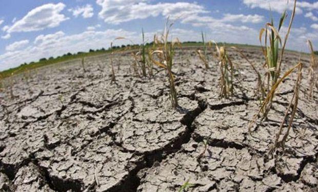 Angustiante panorama del norte santafesino con una larga sequía