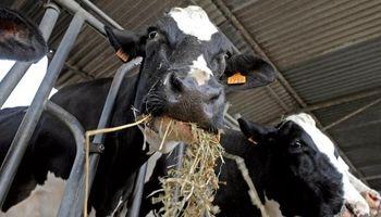Encuentro del sector lácteo para mejorar el proceso comercial
