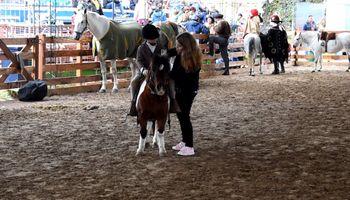 Deporte y terapia: cómo el contacto con los caballos mejora la calidad de vida