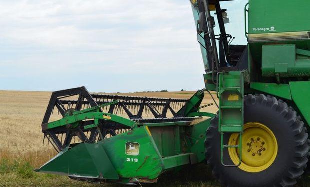 Las primeras recolecciones de trigo 2018/19 se relevaron sobre las provincias de Tucumán, Salta y Chaco.