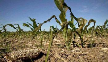 Podrían llegar las lluvias que alivien la sequía en Córdoba