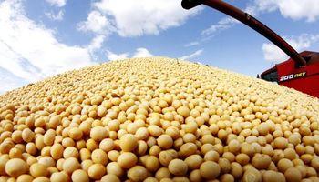 Suba de retenciones a la soja, ¿otra carga sobre el sector agropecuario?