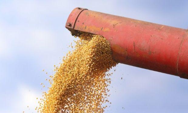 La presión estacional por el ingreso de la cosecha de Estados Unidos. repercute en el mercado.