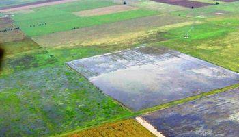 Lluvias arruinaron soja en Uruguay