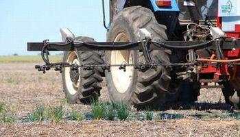 Aportes del INTA en agricultura y ganadería de precisión tienen un retorno de US$ 650 millones