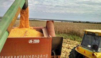 """El Gobierno apuesta a un """"fuerte repunte de la producción agrícola"""""""