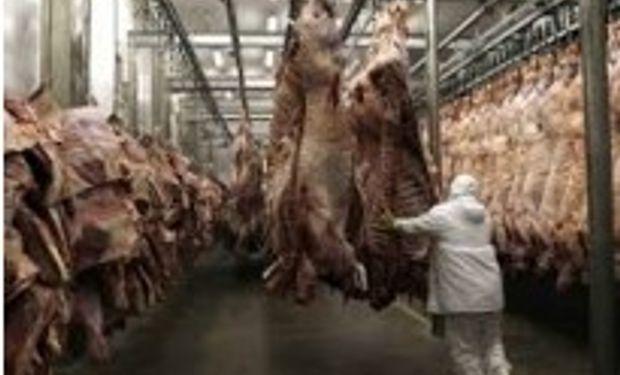 Rusia baja aranceles a la carne bovina de Argentina