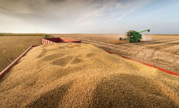 Estimaciones Previas del Informe del USDA de Noviembre.