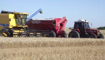 La transformación de los agronegocios: un cambio que alcanza a muchos eslabones
