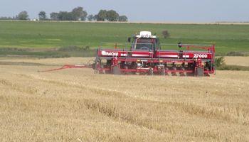 Se quebró la tendencia a sumar gramíneas: la soja vuelve a ganar hectáreas