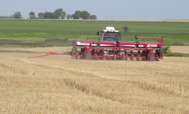 A pasos de gigante, la siembra de soja sumó casi 1,5 millones de hectáreas en solo 7 días.