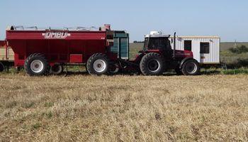Impacto de retenciones: la siembra caería 1,1 millones de hectáreas en el ciclo 2019/20