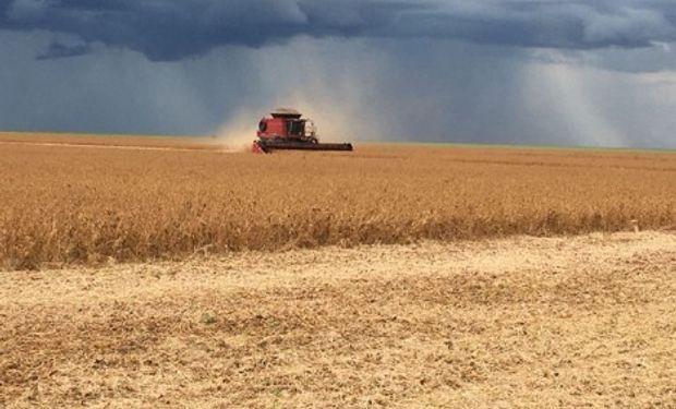 El otro factor que brindó impulso a la soja fueron los anuncios realizados por el USDA de nuevas ventas al exterior de soja norteamericana.