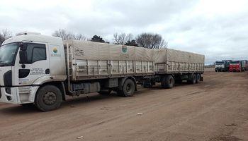 Nuevos valores de referencia del transporte de granos: cómo quedó la tarifa