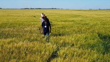 Agrotour 2018: cómo vienen los cultivos de fina en la zona de Bahía Blanca