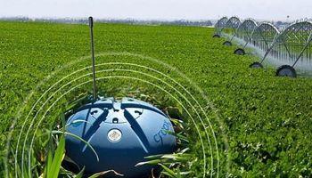 Un mar de datos en tiempo real: los sensores de la agricultura 4.0